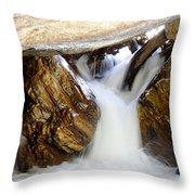 Spun Silk - Sequoia National Park Throw Pillow