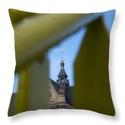 Spying God Throw Pillow