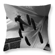 Sq Lily Morning Bw  Throw Pillow