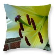 Sq Lily Morning Throw Pillow