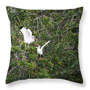 Squabbling Birds Throw Pillow