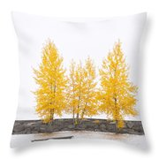 Square Diptych Tree 12-7693 Set 1 Of 2 Throw Pillow