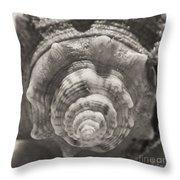 Square Sepia Sea Shell Throw Pillow