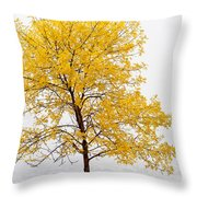 Square Tree Throw Pillow
