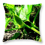 Squash Bud Throw Pillow