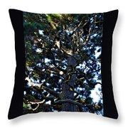 Squiggly Branches Throw Pillow