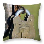 Squire Brass Lock Throw Pillow