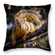 Squirrel 2 Throw Pillow