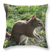 Squirrel And His Sunflower Seed Throw Pillow