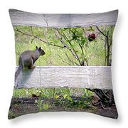 Squirrel And Rosebush Throw Pillow