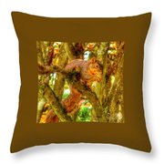 Squirrel Away Acorn Throw Pillow