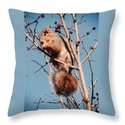 Squirrel Berry Throw Pillow