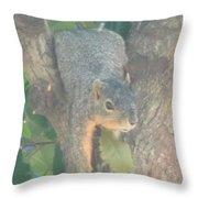 Squirrel Chillin Throw Pillow