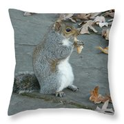 Squirrel Chomping On Bread Throw Pillow