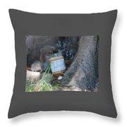 Squirrel Eating Throw Pillow