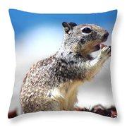 Squirrel Enjoying Lunch On The Beach Throw Pillow