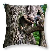 Squirrel Guarding Watering Knot Throw Pillow