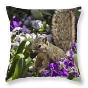Squirrel In The Botanic Garden-dallas Arboretum V2 Throw Pillow