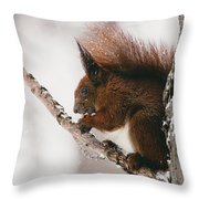 Squirrel In Winter Throw Pillow