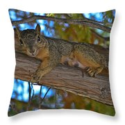 Squirrel Looking Down On Viewer Throw Pillow