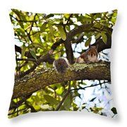 Squirrel On A Branch Throw Pillow