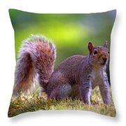Squirrel On Grass Throw Pillow