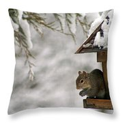 Squirrel On The Bird Feeder Throw Pillow