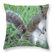 Squirrel On The Grass Throw Pillow