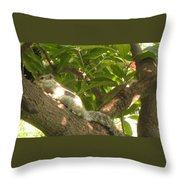 Squirrel On The Tree Throw Pillow