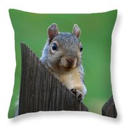 Squirrel Playing Peek A Boo Throw Pillow
