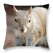 Squirrel Profile Throw Pillow