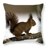 Squirrel Profile Throw Pillow