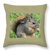 Squirrel Thief Throw Pillow