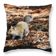 Squirrel Time Throw Pillow