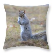 Squirrel With Dirt On Nose Throw Pillow