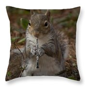 Squirrel With His Obo Throw Pillow