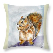 Squirrel With Nut Throw Pillow