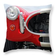Squirrels Nightmare Throw Pillow