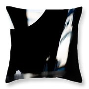 Sr22 Reflection Throw Pillow