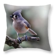 Sring Time Titmouse Throw Pillow by Skip Willits