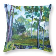 St. Andrew's Park Throw Pillow
