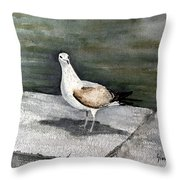 St Augustine Gull Throw Pillow
