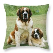 St Bernard With Puppy Throw Pillow