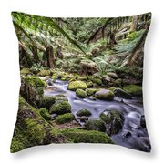 St Columba Falls Throw Pillow