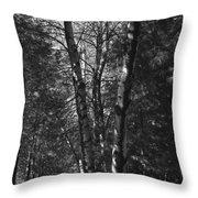 St-denis Woods 2 Throw Pillow