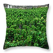 St. Emilion Winery Throw Pillow