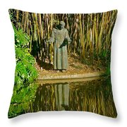St. Francis In Nature Throw Pillow