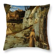 St Francis Of Assisi In The Desert Throw Pillow