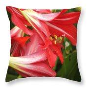 St. Joseph Lilies Throw Pillow