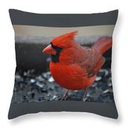 St. Louis Throw Pillow by Skip Willits